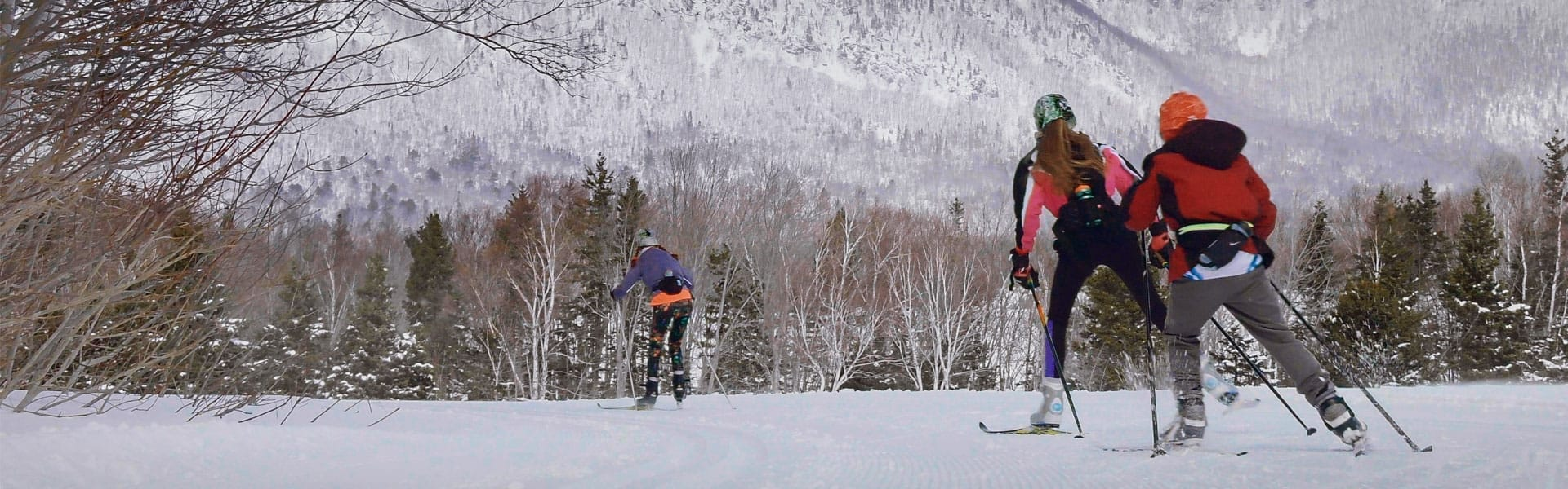 Three cross country skiers make their way towards a snowy mountain