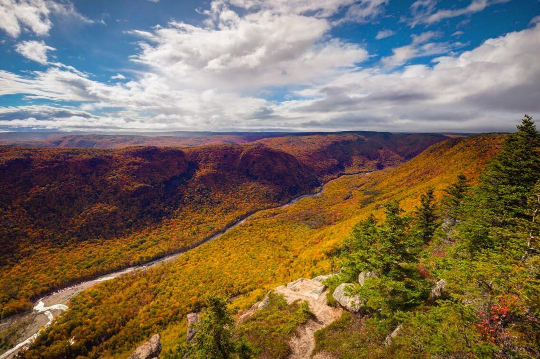 7 Natural Wonders of Autumn on Cape Breton Island 5