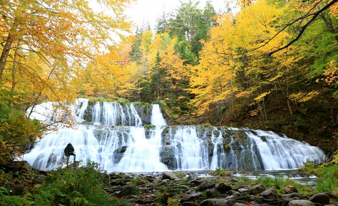 7 Natural Wonders of Autumn on Cape Breton Island 7