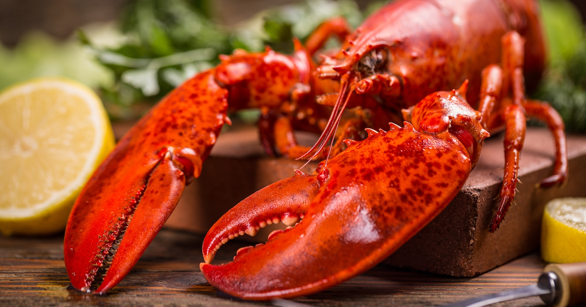 Lobster-Licious