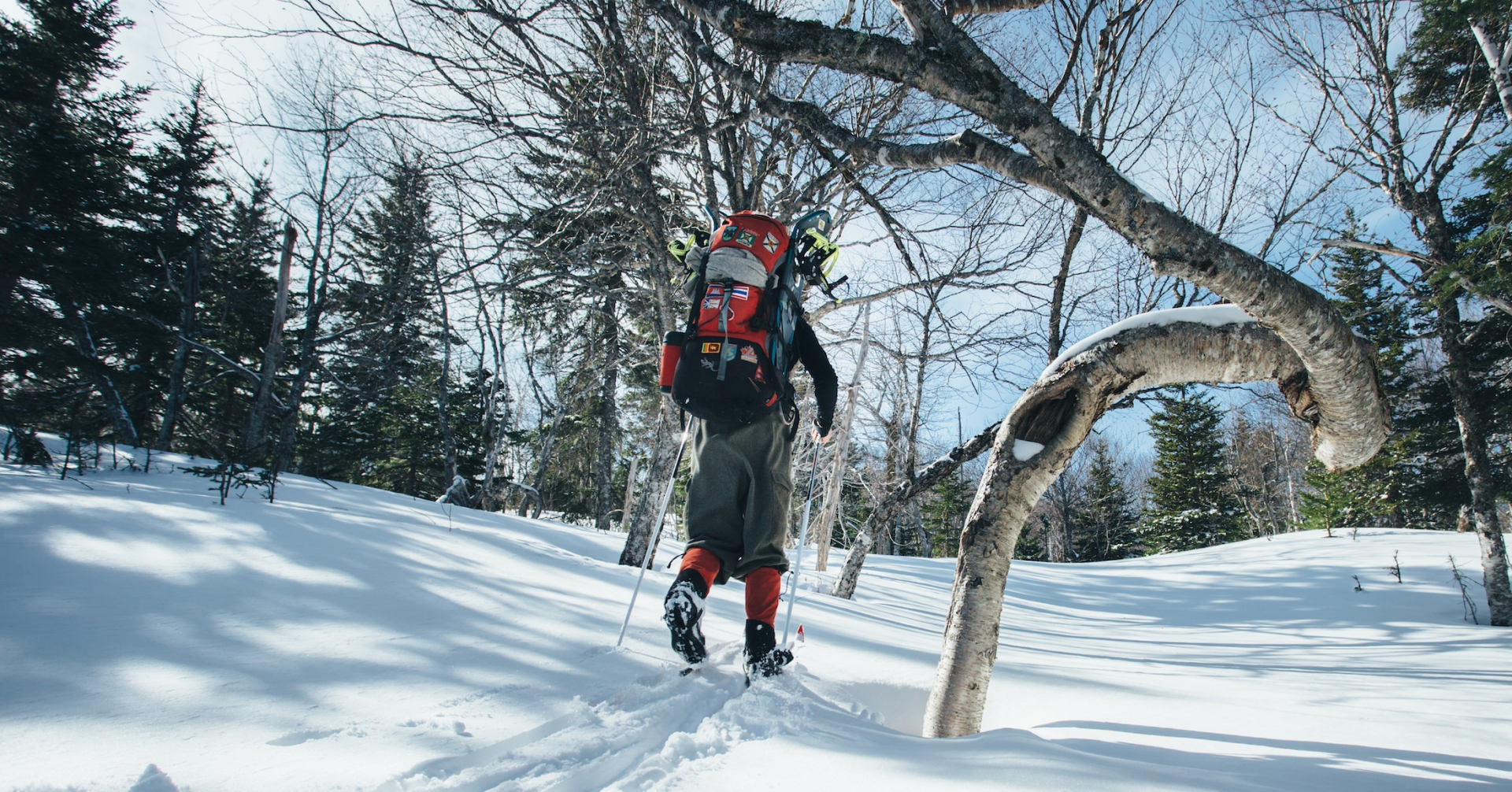 Snowshoe Packages