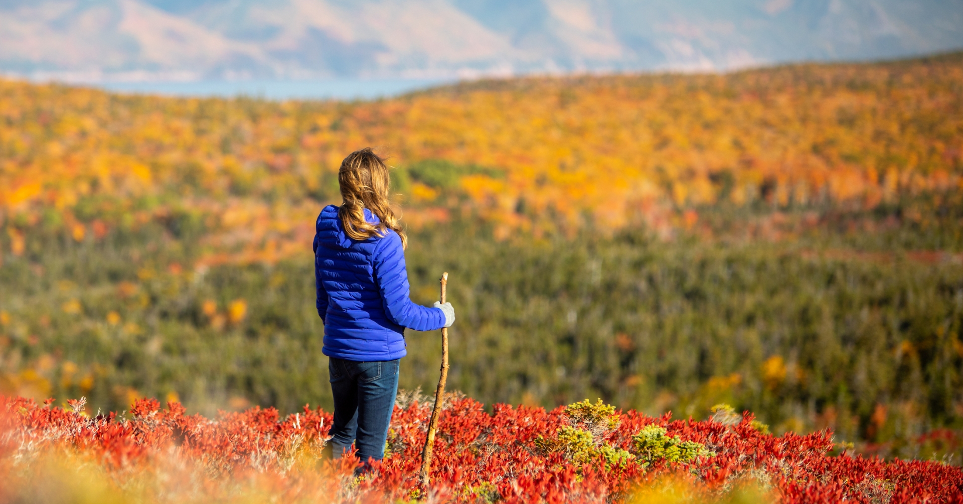 hiker stops to admire the fall foliage